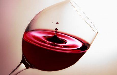 כרמי לבנשטיין מומחית יין הלכה לעולמה